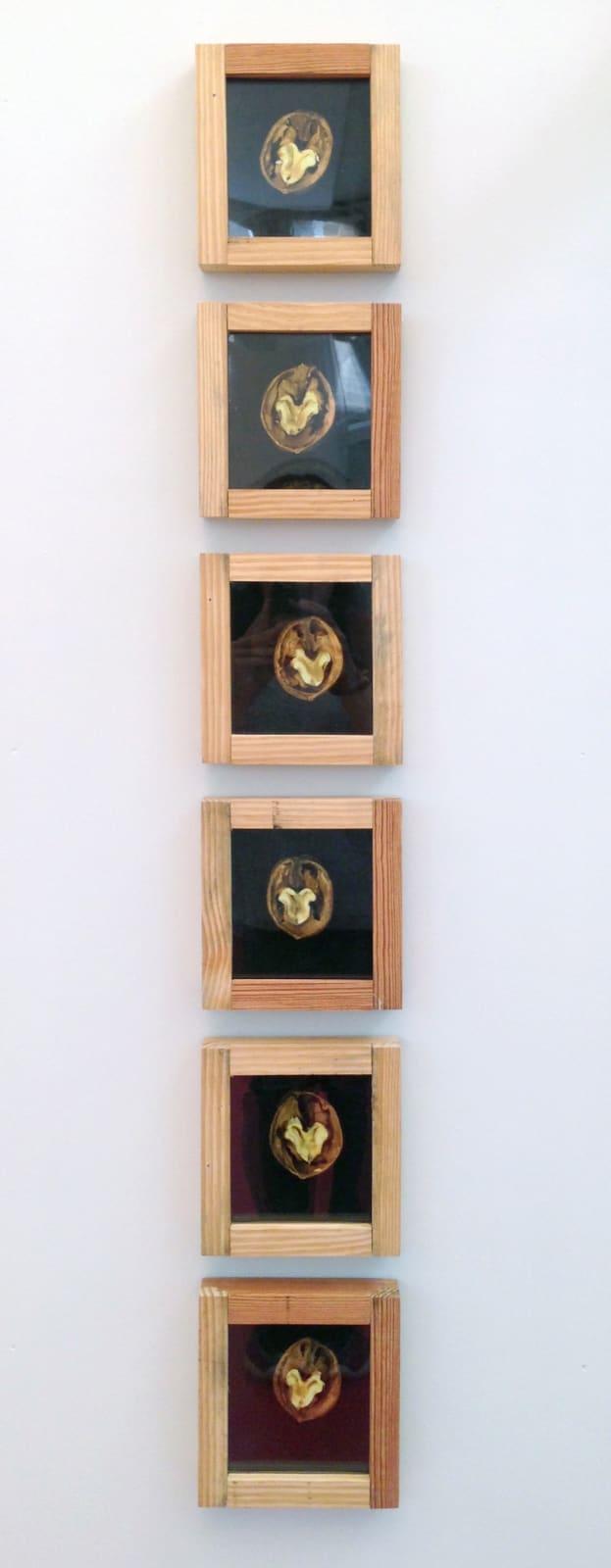 Pascal Kern, Nature, 2002