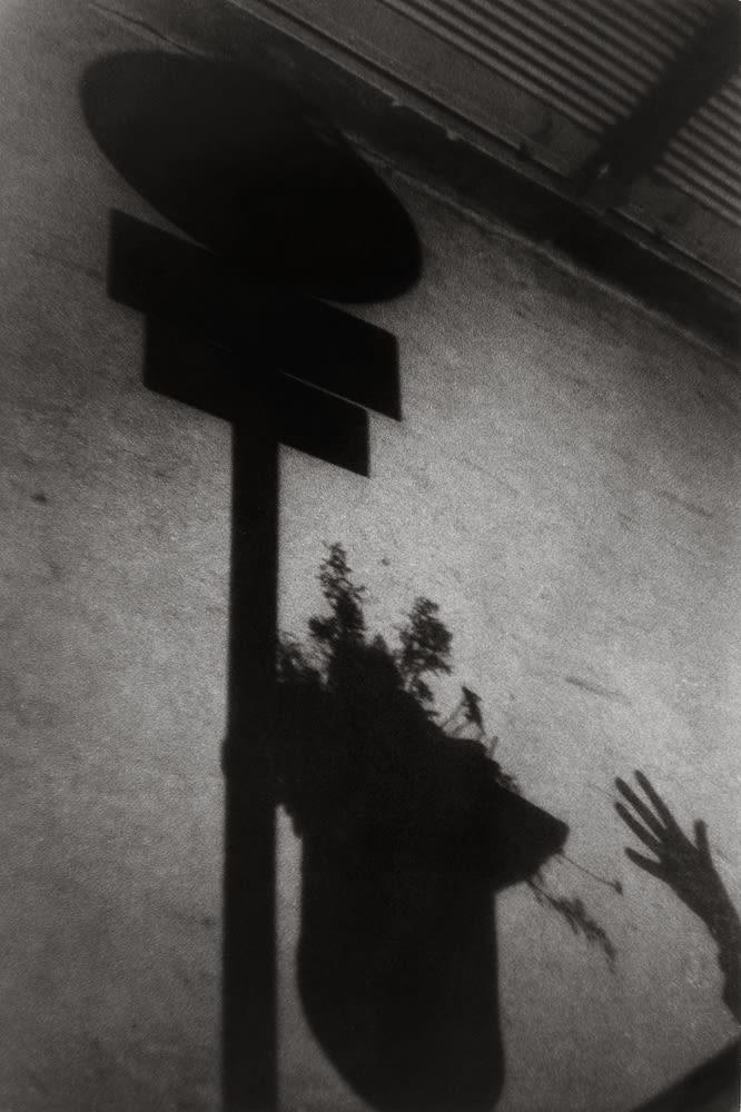 Sabine Weiss, Vienne, Autriche, 1955