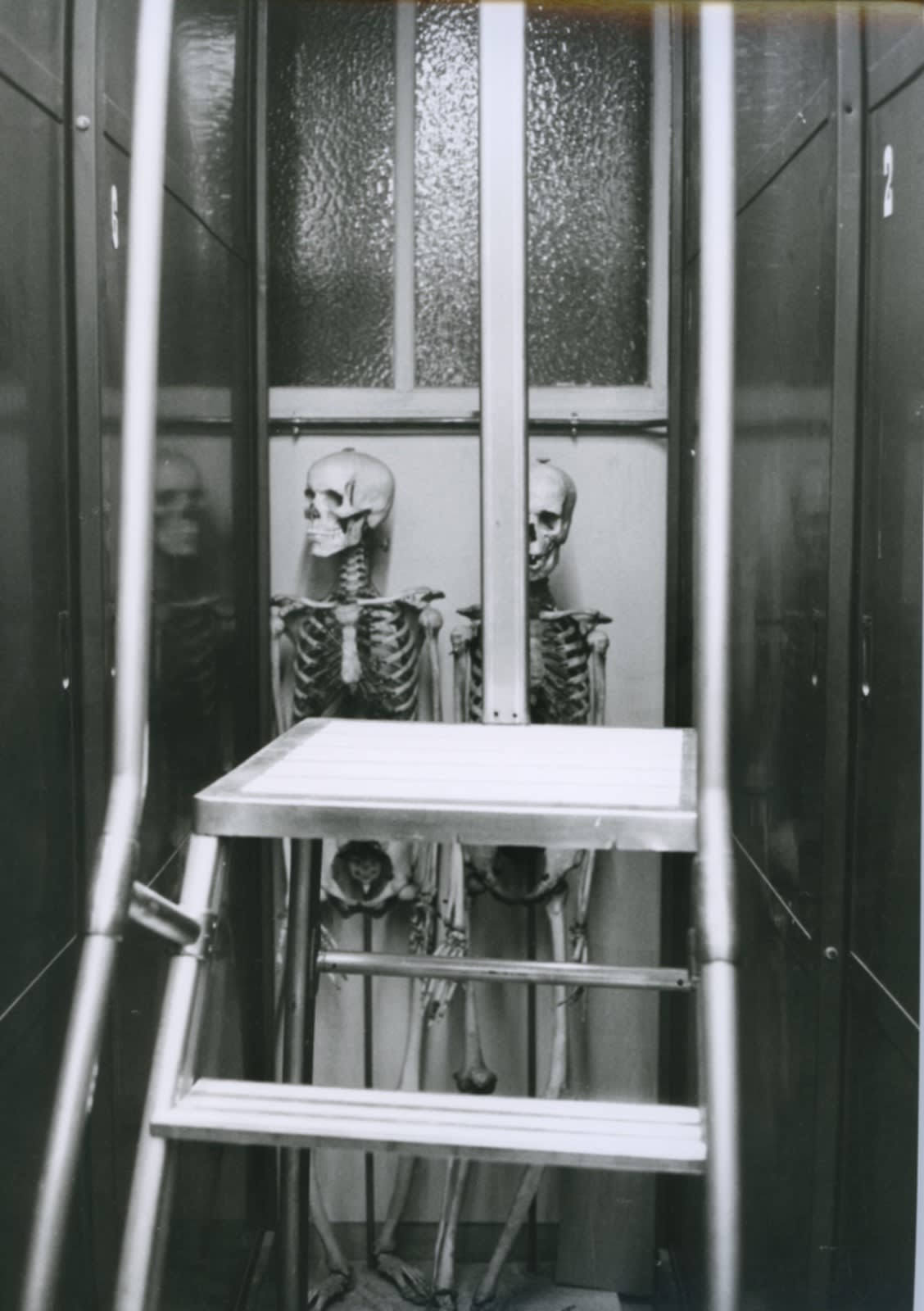 Hervé Guibert, Musée de l'Homme, Paris, 1978