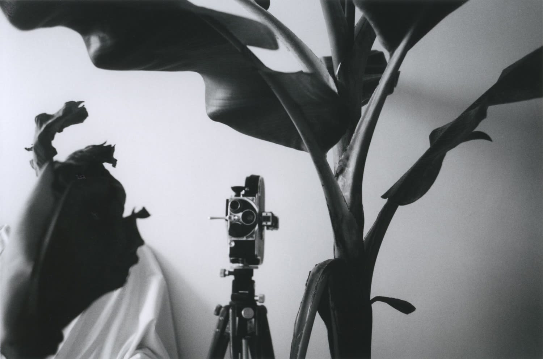 Hervé Guibert Le rêve du cinéma (rue du Moulin-Vert) Tirage gélatino-argentique d'époque 15 x 23,7 cm Dim. papier: 24 x 30,5 cm