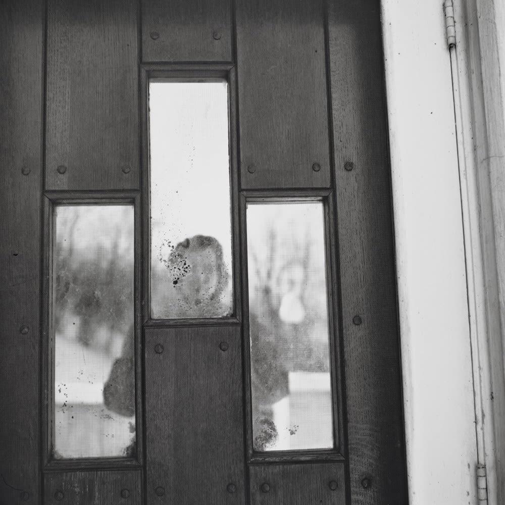 Vivian Maier, Self Portrait, Chicago area, 1963