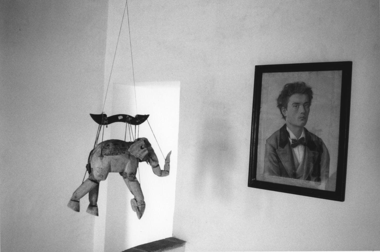 Hervé Guibert, L'éléphant et le tableau, 1988-1989