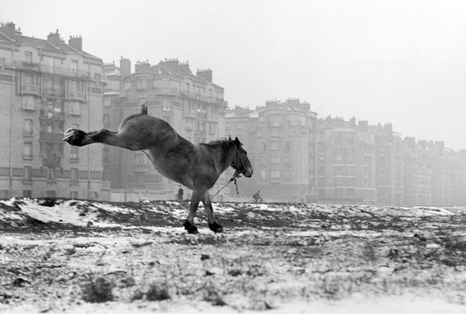 Sabine Weiss, Porte de Vanves, Paris, 1951