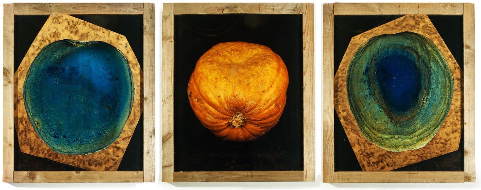 Pascal Kern, Nature, 1990