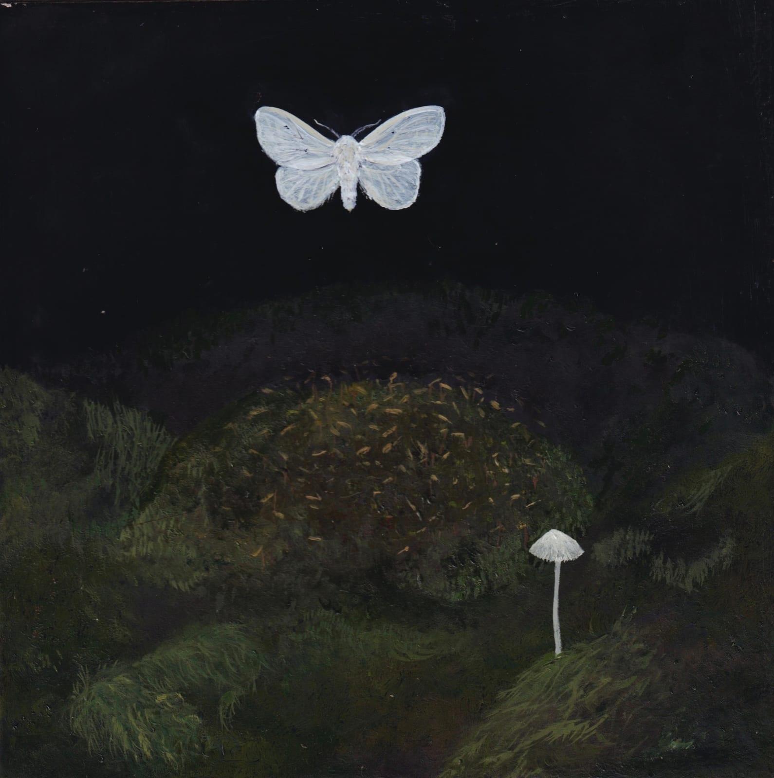 Melanie Miller, Satin Moth, 2020