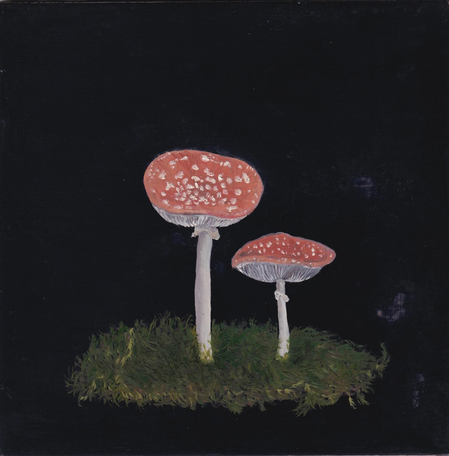 Melanie Miller, Fungi II, 2020