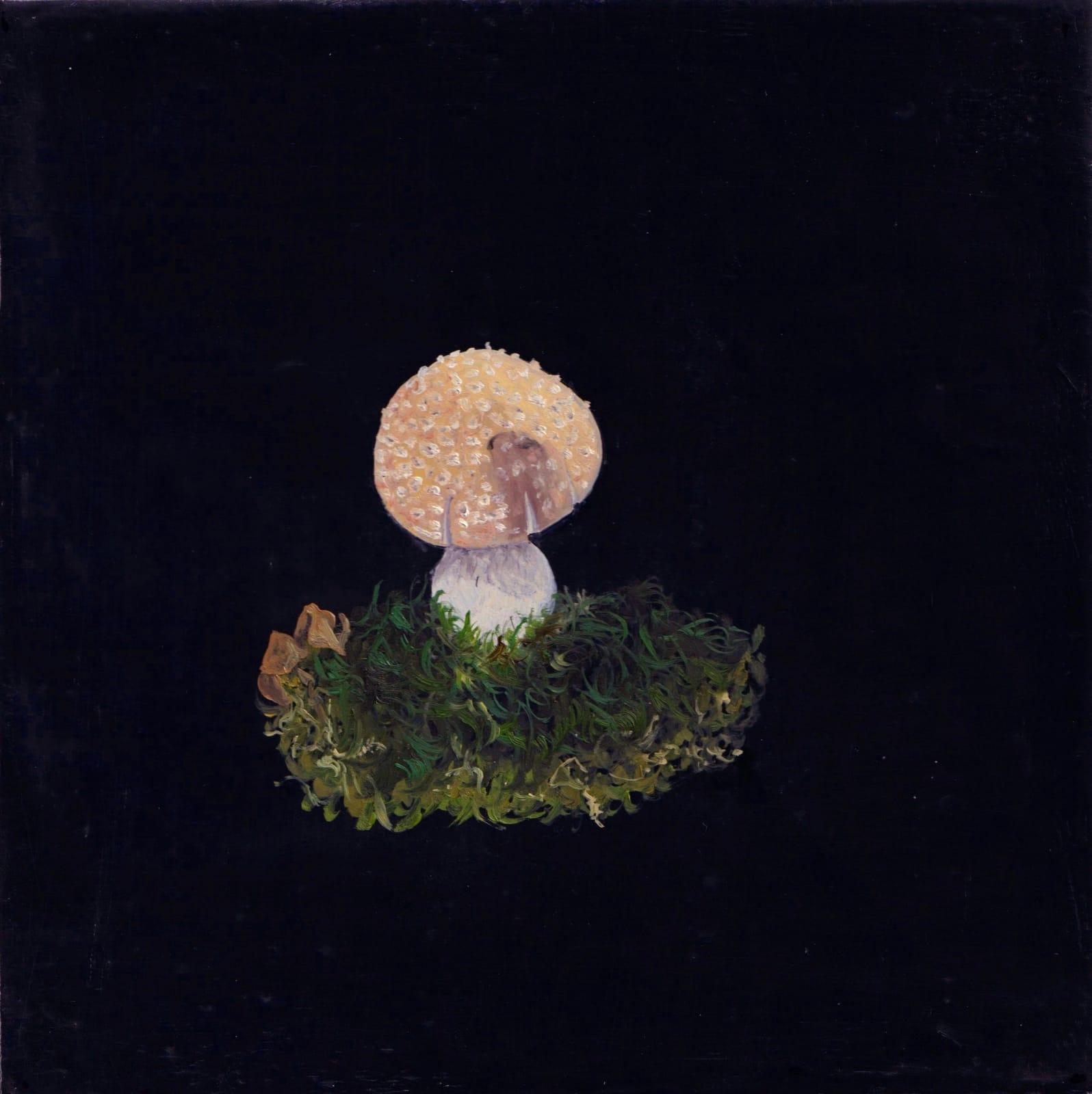 Melanie Miller, Fungi I, 2020