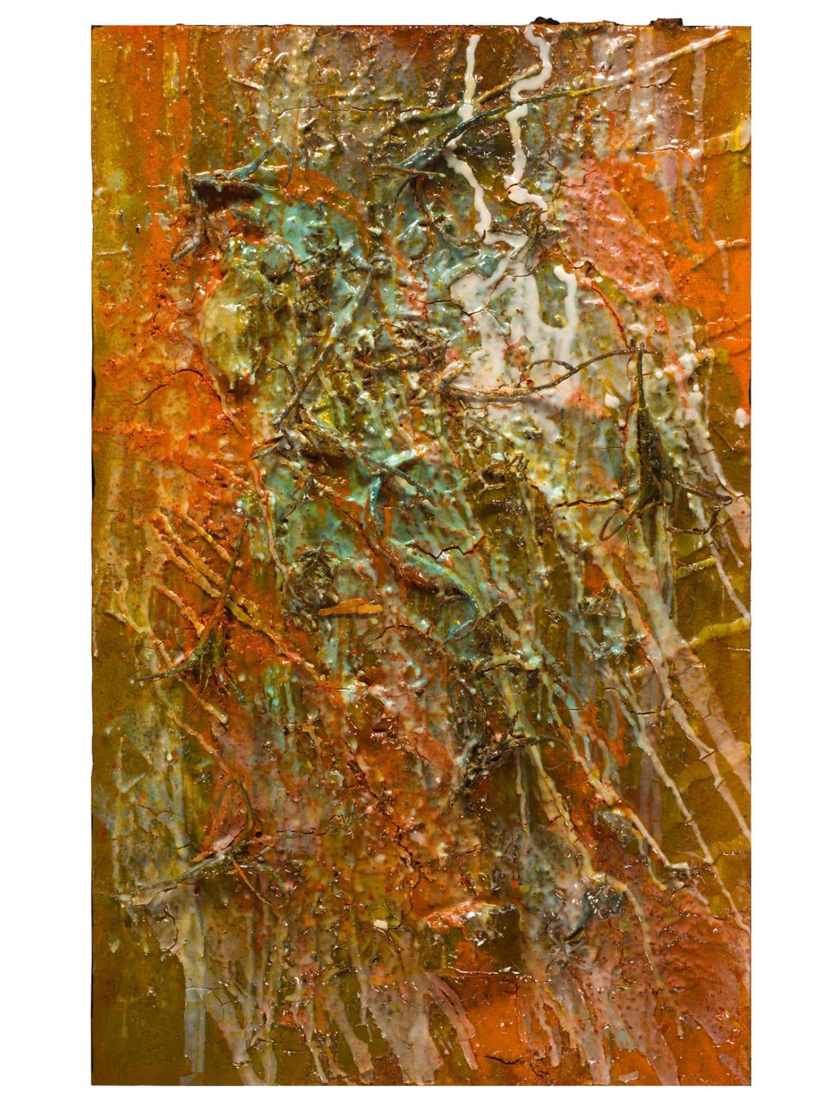 Lyric Joplin, Wood Spider, 2015