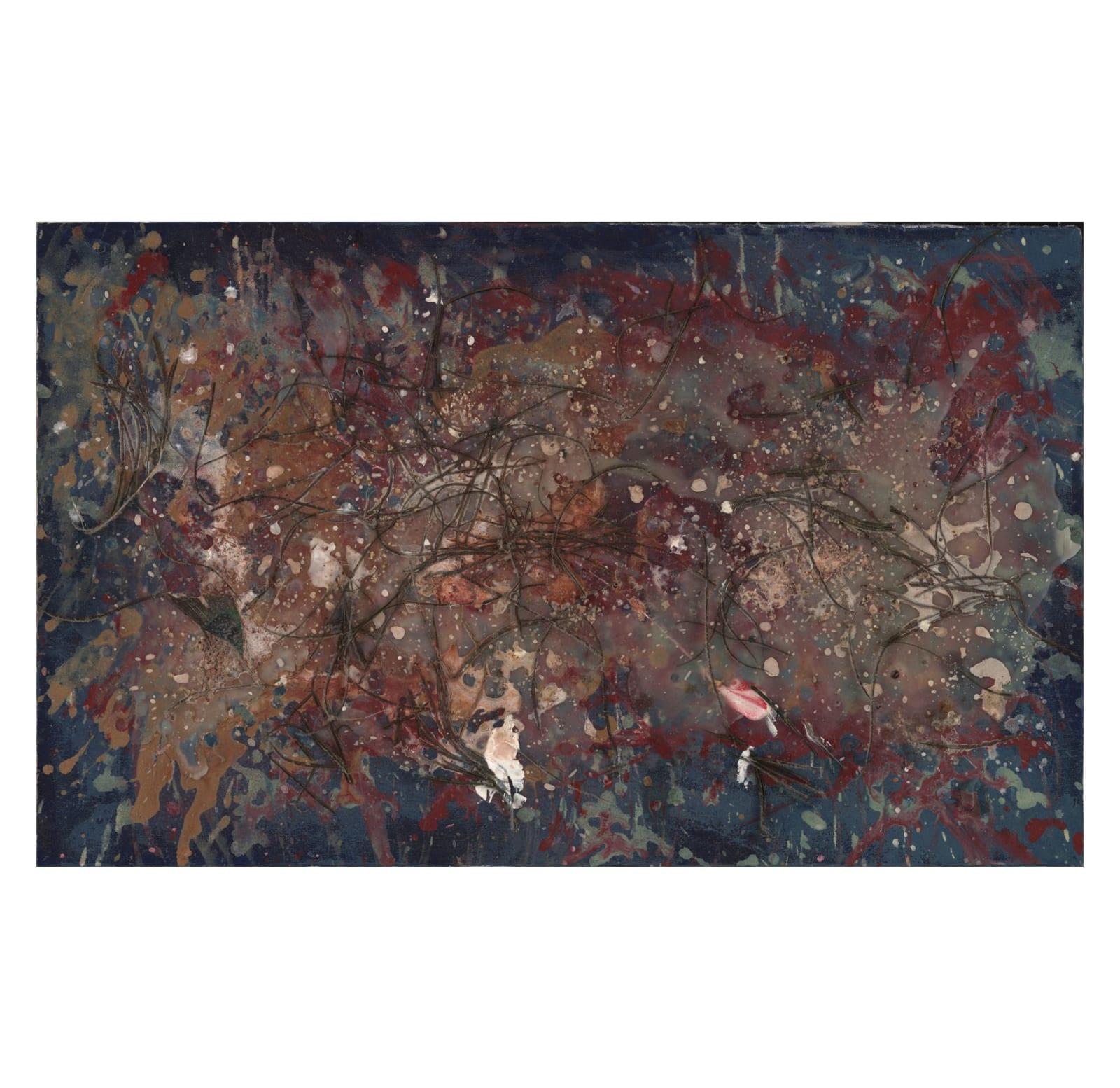 Lyric Joplin, Cosmos, 2005