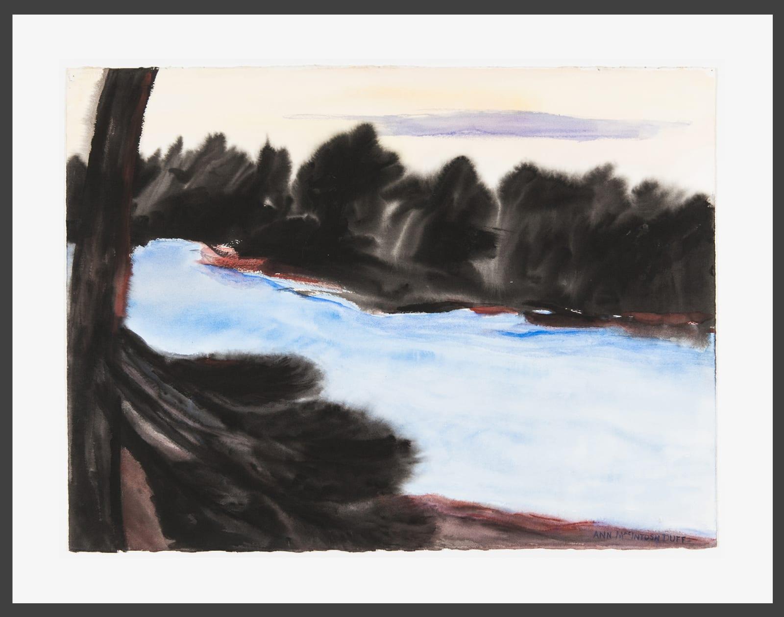 Ann MacIntosh Duff, The Magnificent Wilderness, c. 2010