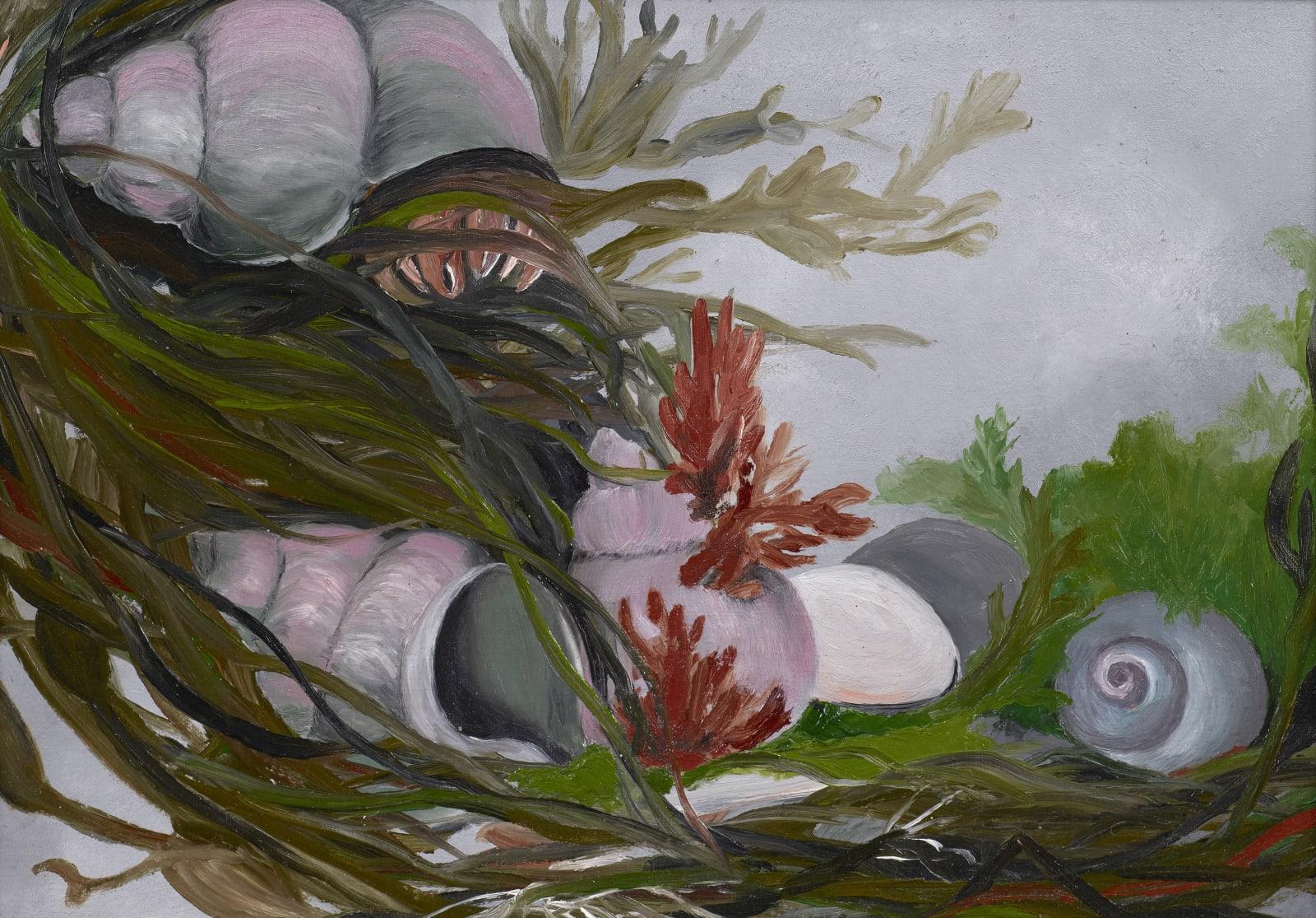 Ida O'Keeffe, Sea-Shells, 1927