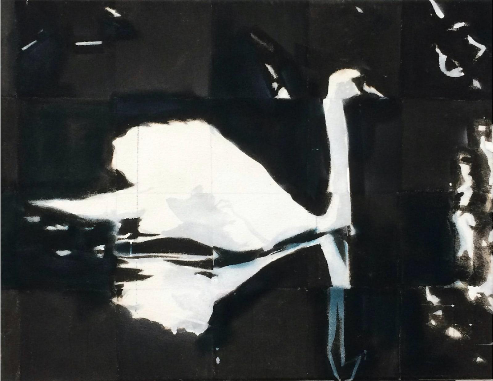 Rowan Bazley, Swan, 2020
