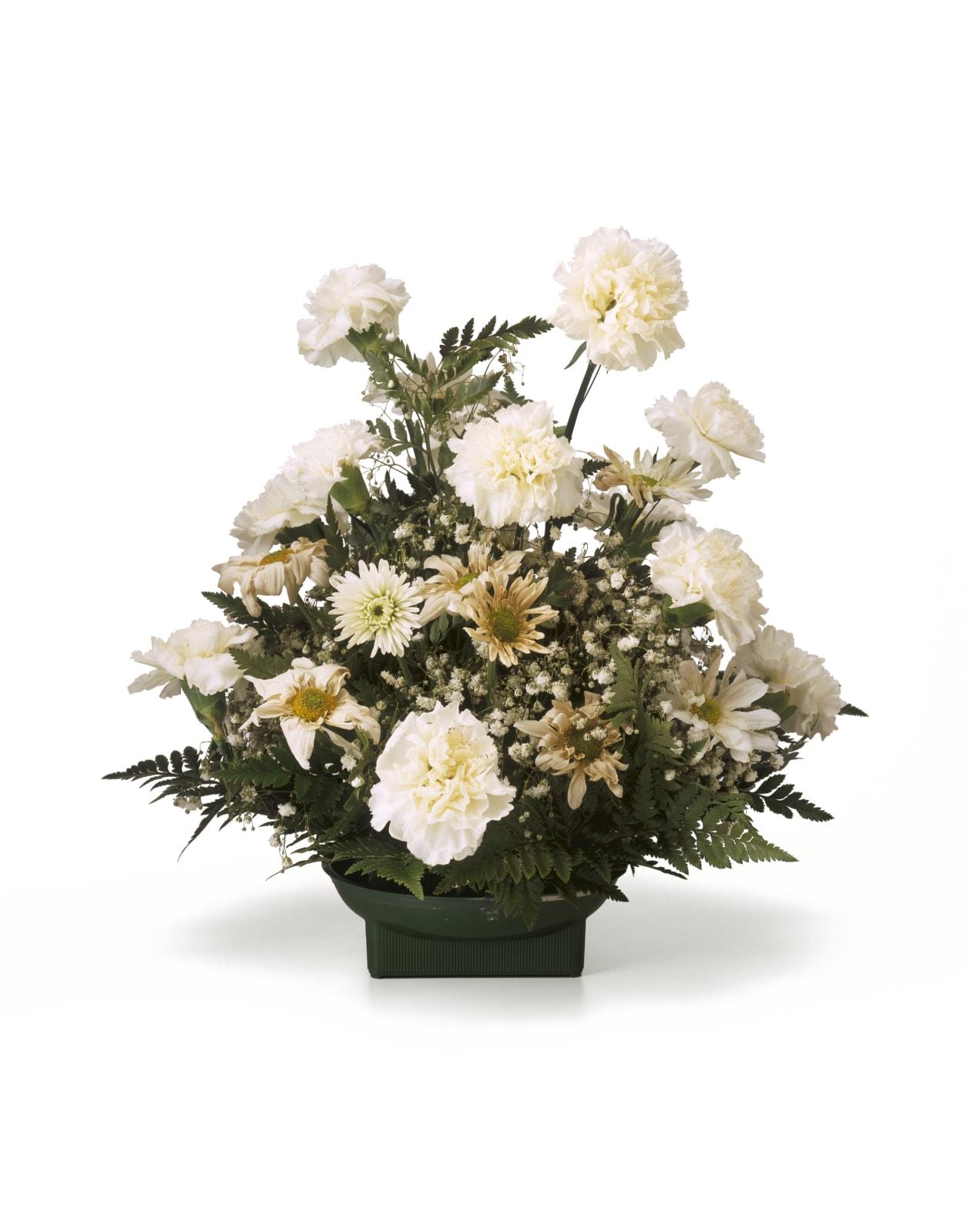Chuck Ramirez, Quarantine: White Carnations, 2000