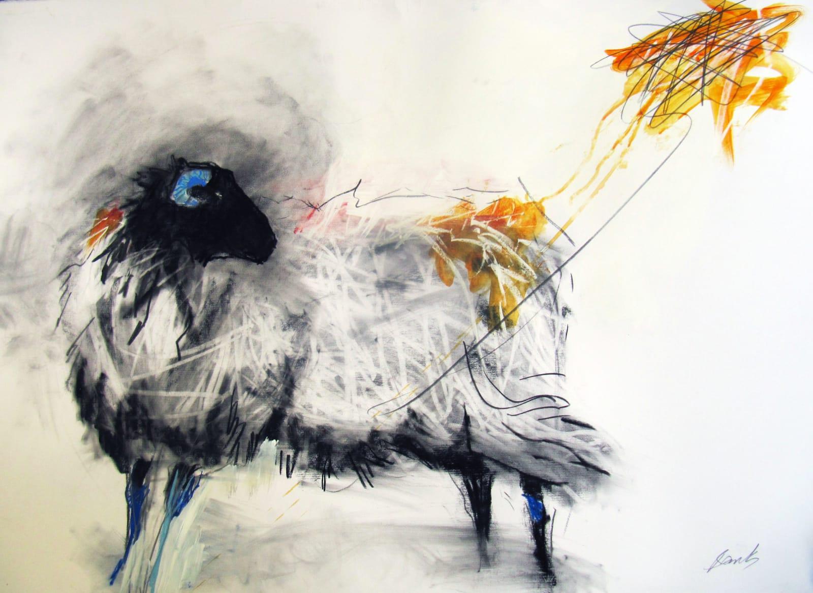Margo Banks, Valentia Sheep