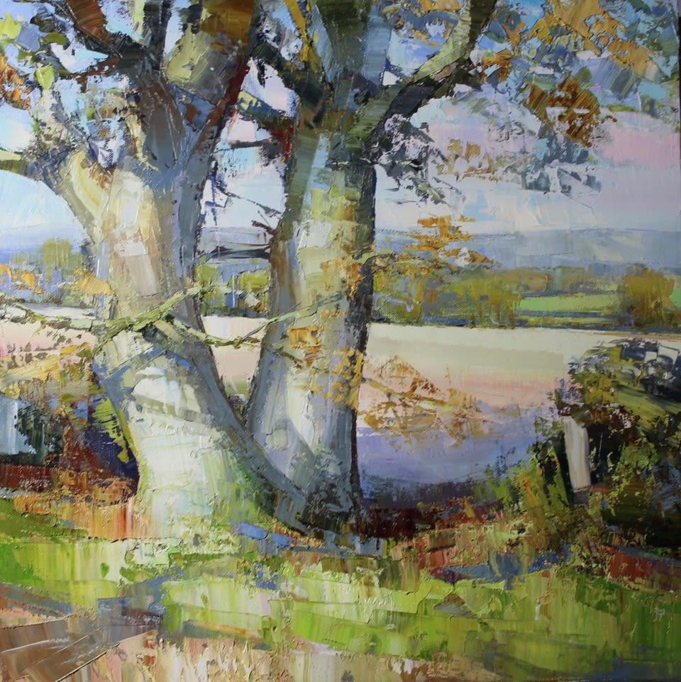 Jonathan Pocock, Hedgerow Oak, 2018
