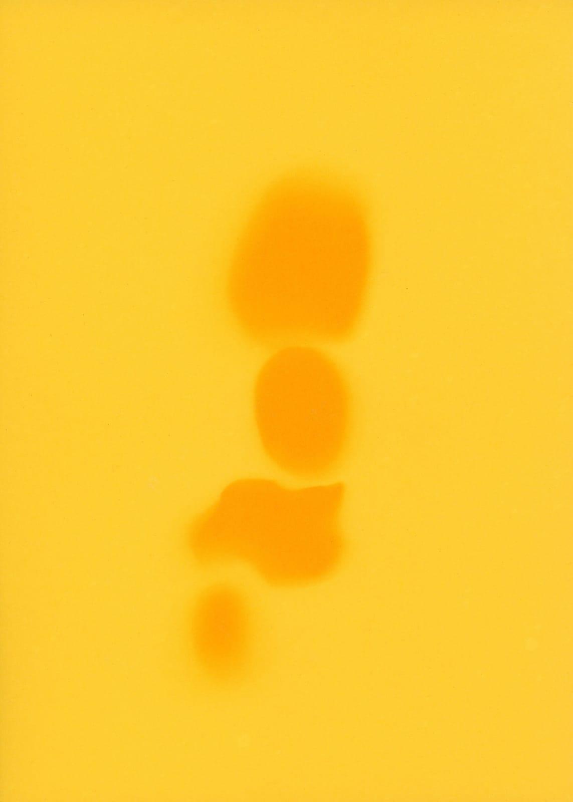 Pareidolie in yellow, 2020. Unique Photogram