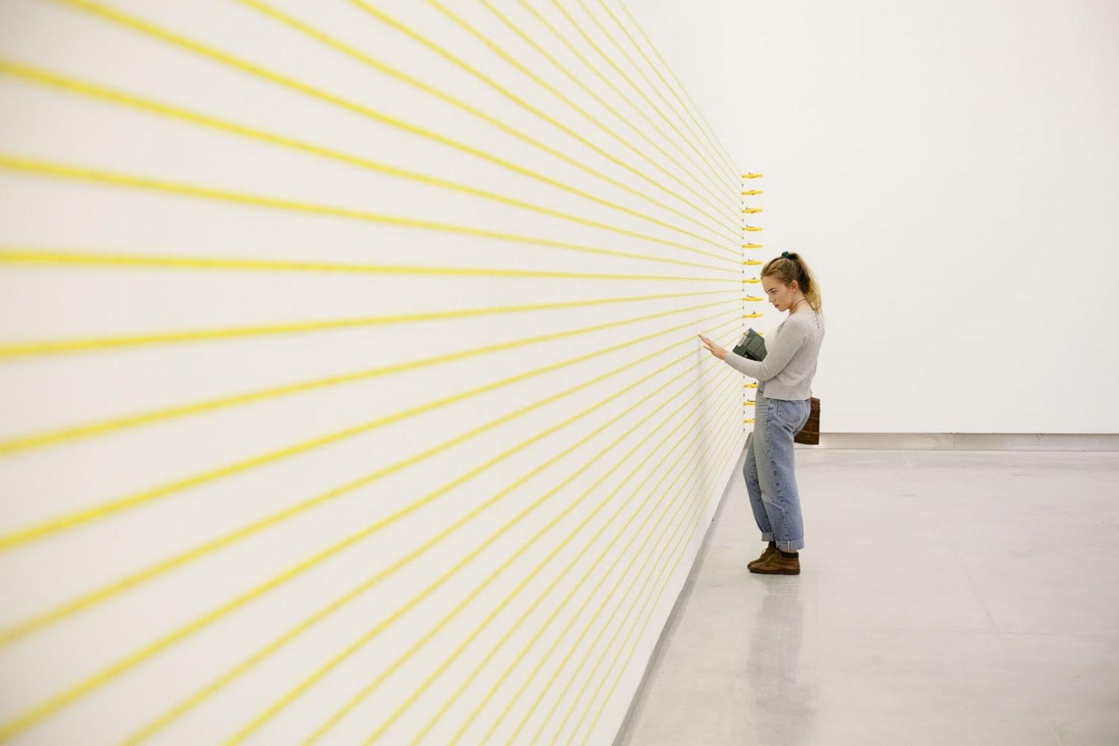 Jacob Dahlgren Units of Measurments South Dublin Art Centre, 2014