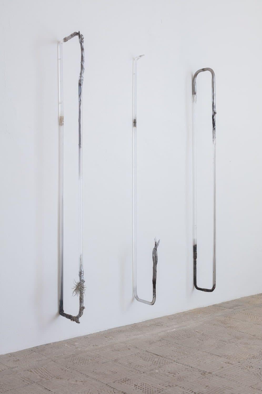 Adriano Amaral, Untitled, 2017