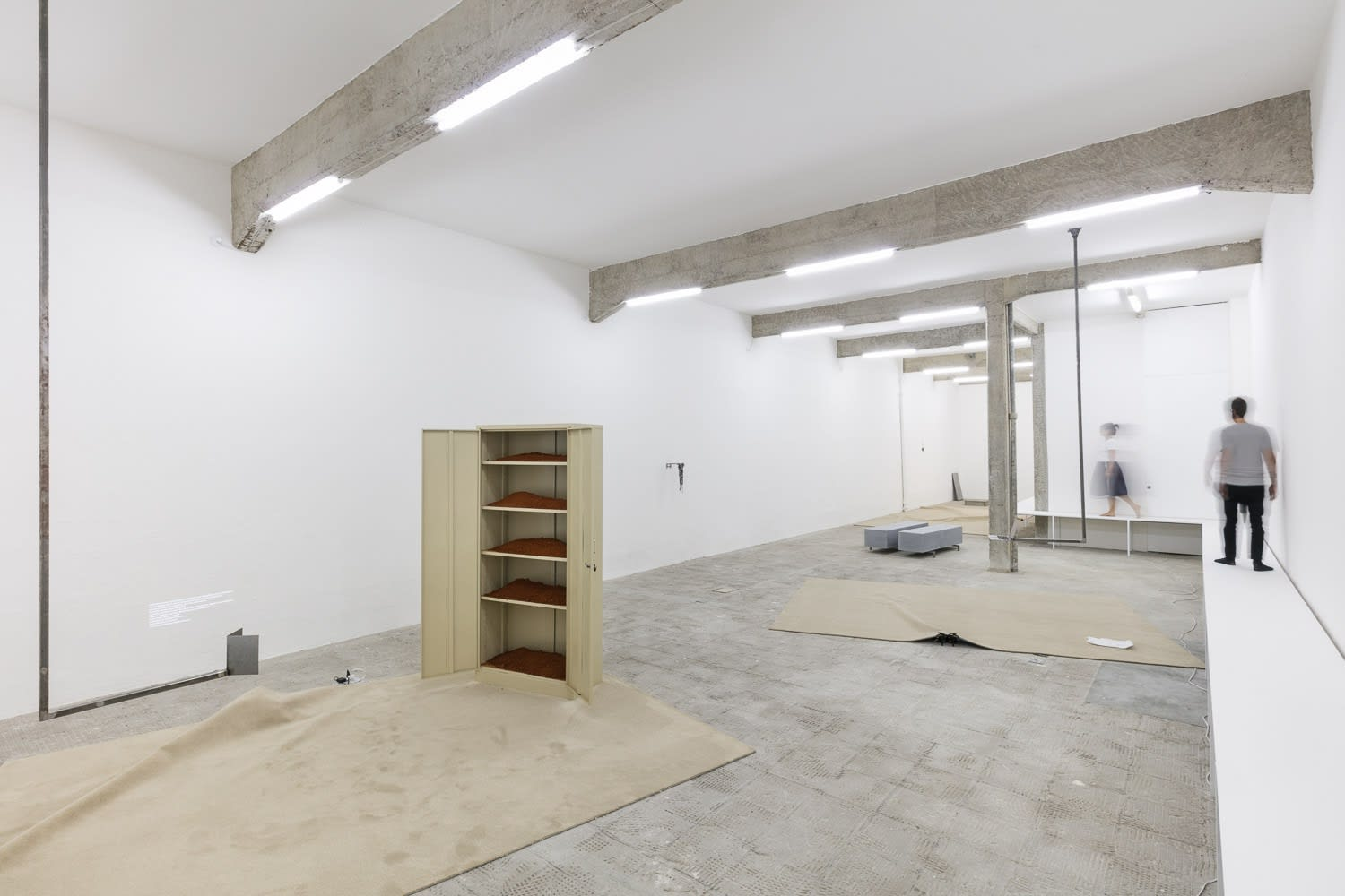 The gallerist, the letter and the garden, exhibition view at Galeria Jaqueline Martins, 2019