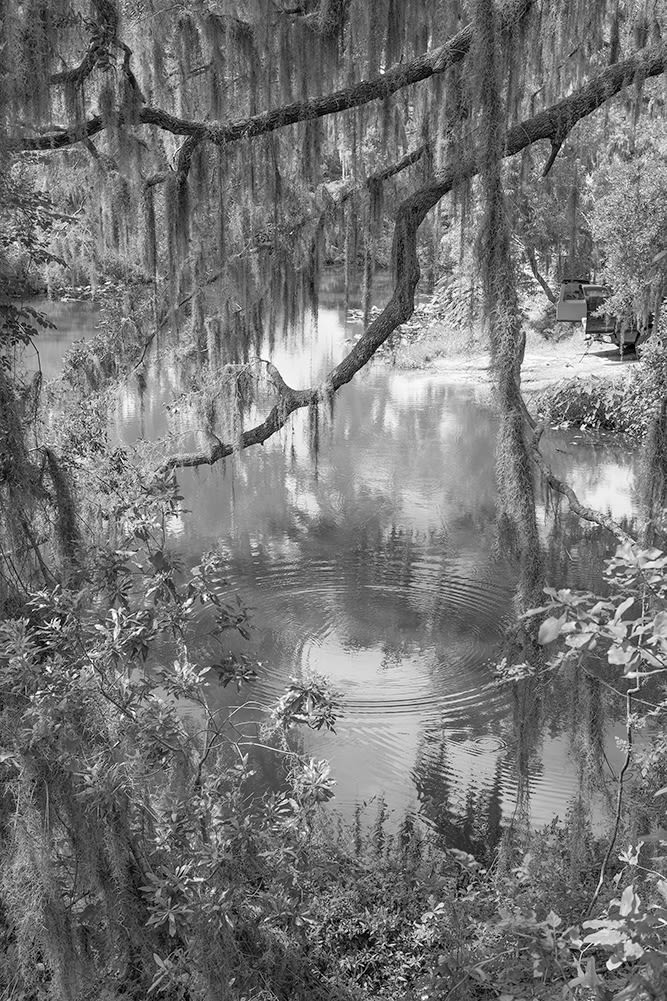 Nabil Harb Carter Road, 2020 Archival pigment print 37 x 25 inches edition of 5 + 2 AP