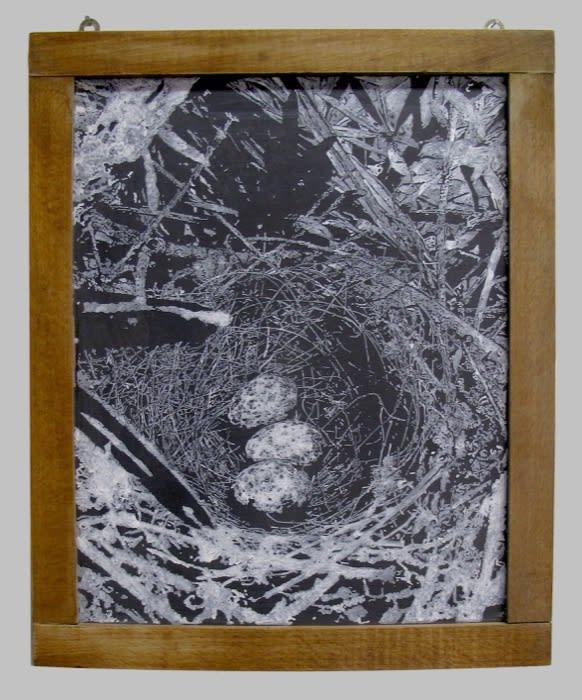 Helen Altman, Nest 19, 2020 acrylic on slate chalkboard, 15 1/2 x 12 in