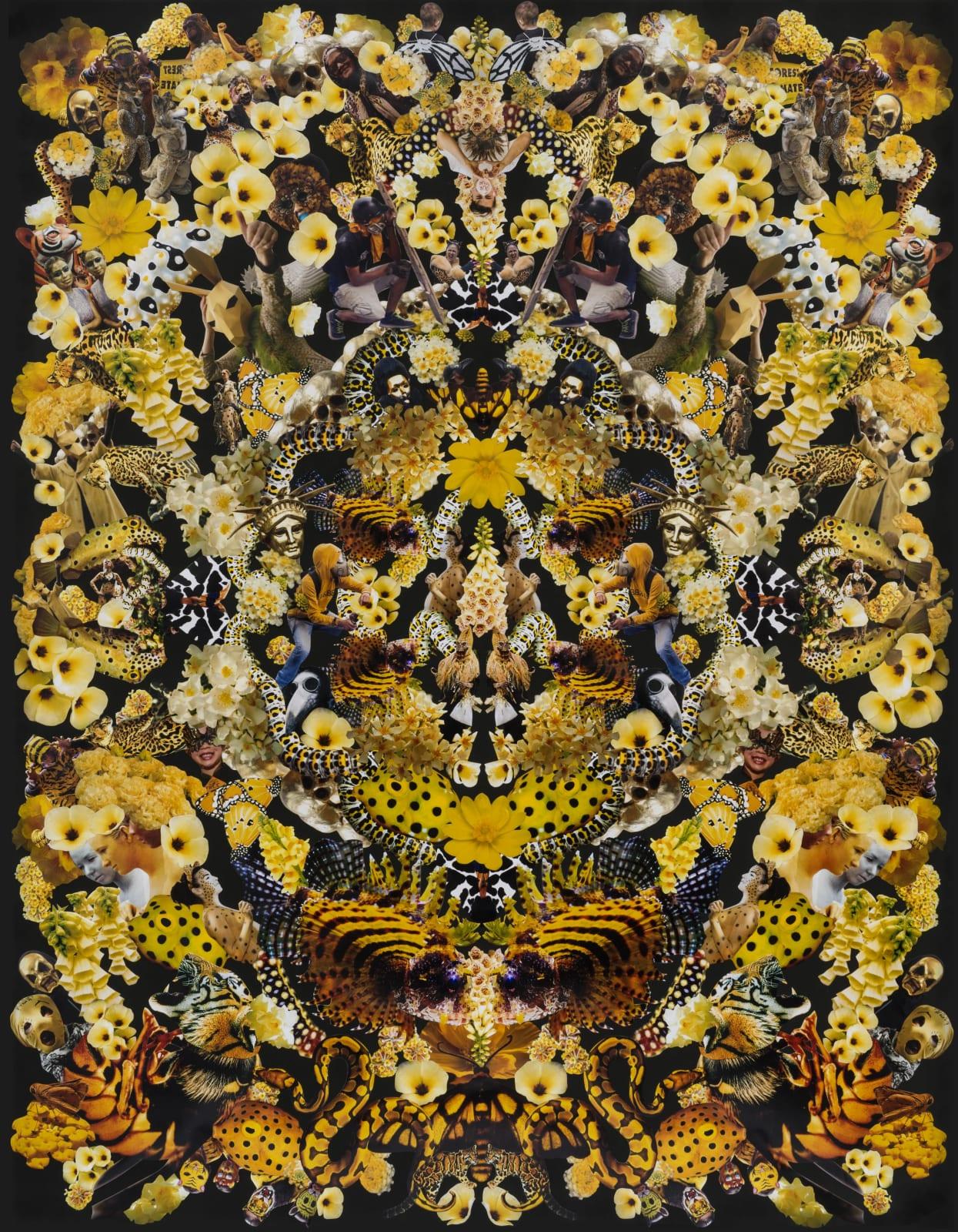 Jemima Wyman, Flourish 7, 2020 hand cut photos on paper, 52 x 40 in