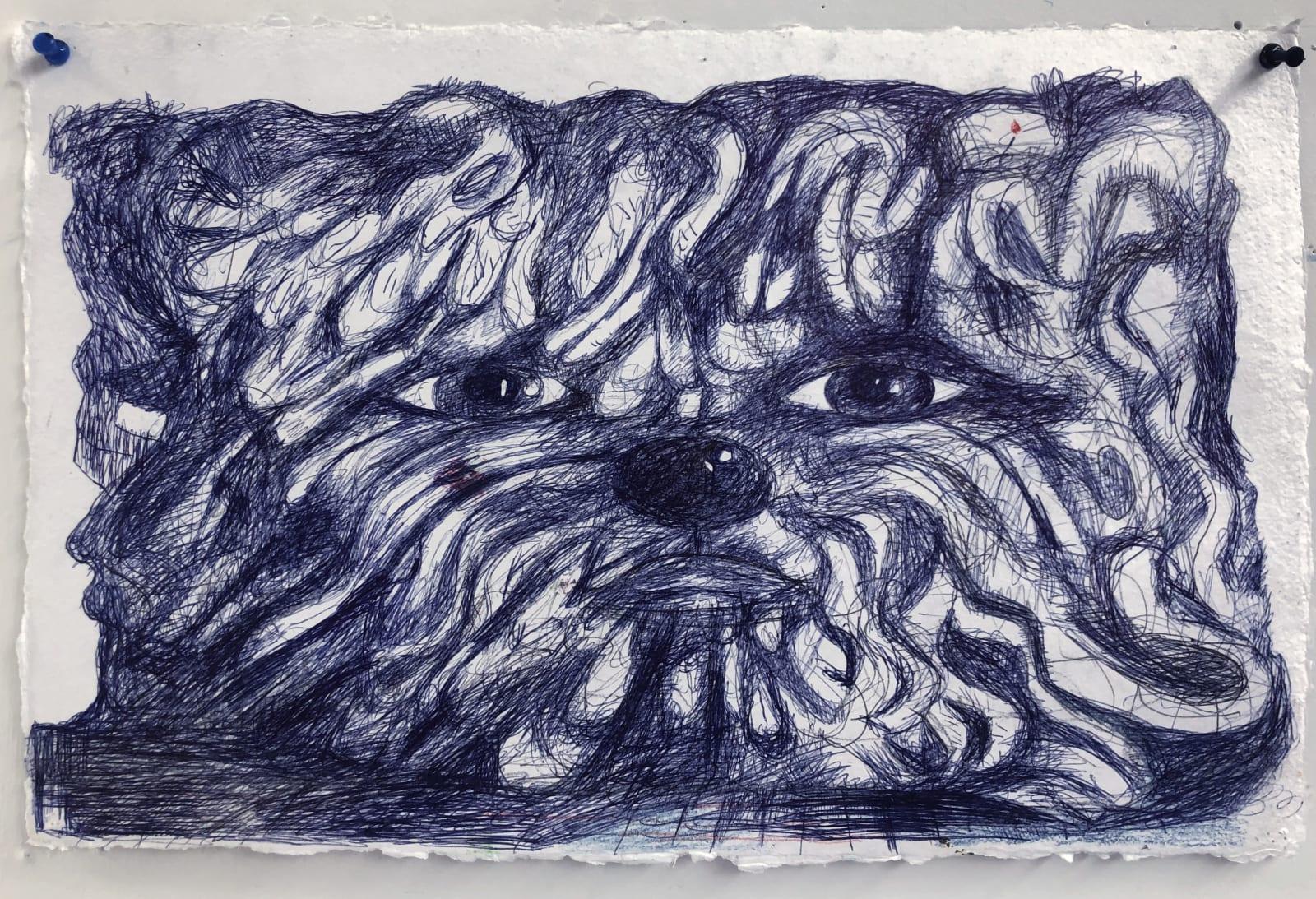 Bill Adams, Untitled, 2020 ballpoint pen on paper, 12 x 18 in