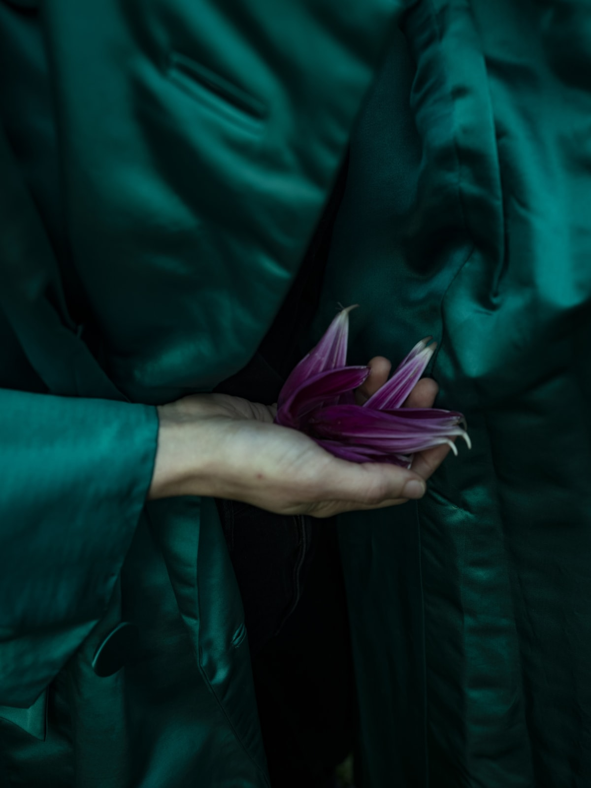 Cig Harvey, Emerald Coat with Dahlia Petals, 2019 20 x 16 inch chromogenic dye coupler print Edition of 10 40 x 30 inch chromogenic dye coupler print Edition of 7