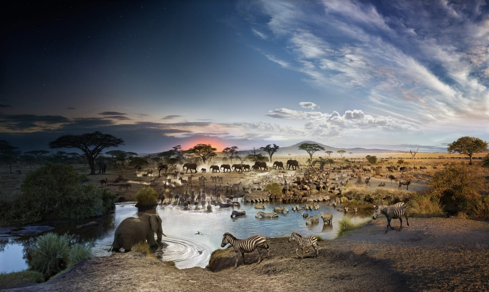 Stephen Wilkes Serengeti National Park, Tanzania, Day to Night, 2015 Signed on label verso 24 x 40 inch archival pigment print Edition of 50 32 x 54 inch archival pigment print Edition of 20 48 x 81 inch archival pigment print Edition of 12