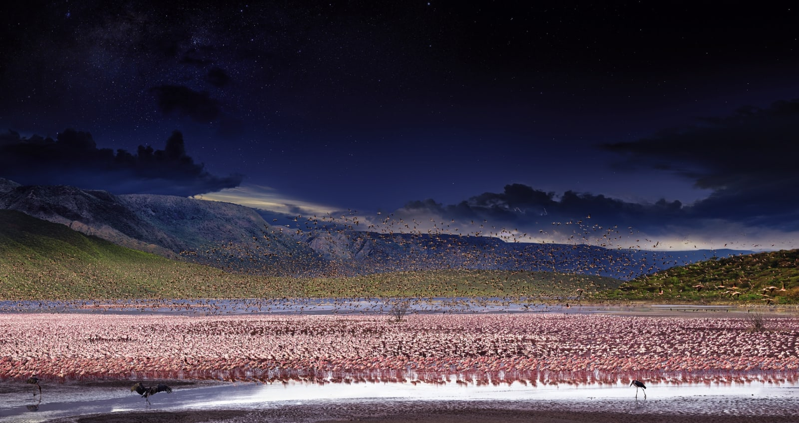 Stephen Wilkes Lesser Flamingos, Lake Bogoria Kenya, Africa, Day to Night, 2017 Signed on label verso 24 x 45 1/2 inch archival pigment print Edition of 20 34 x 64 inch archival pigment print Edition of 15 50 x 94 inch archival pigment print Edition of 12 60 x 113 inch archival pigment print Edition of 2