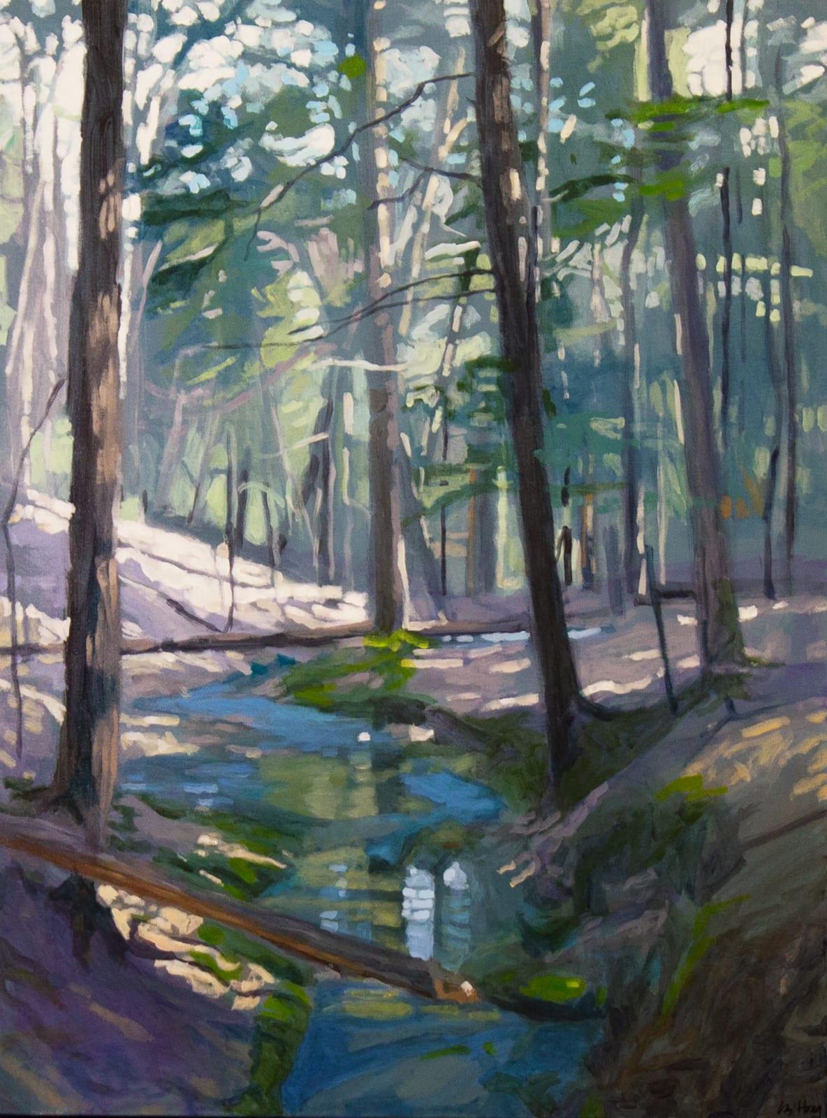 Liz Hoag: Beyond The Trees