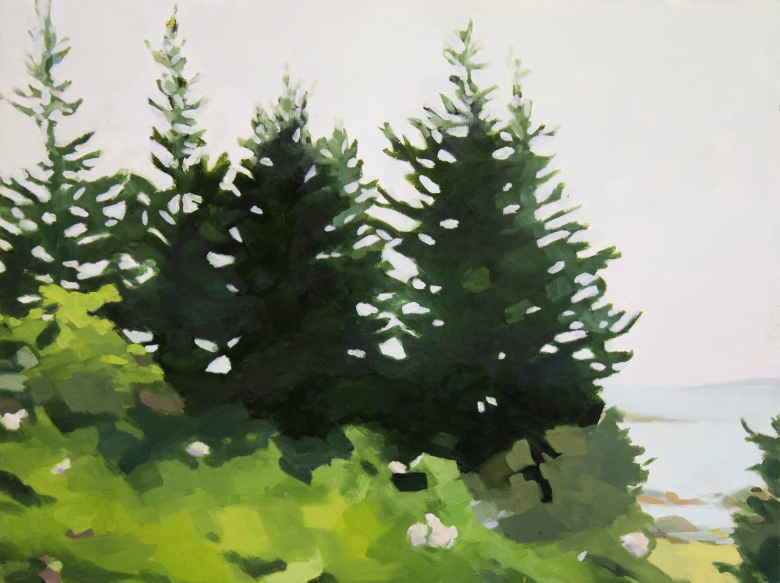Anne Ireland: Walking Green
