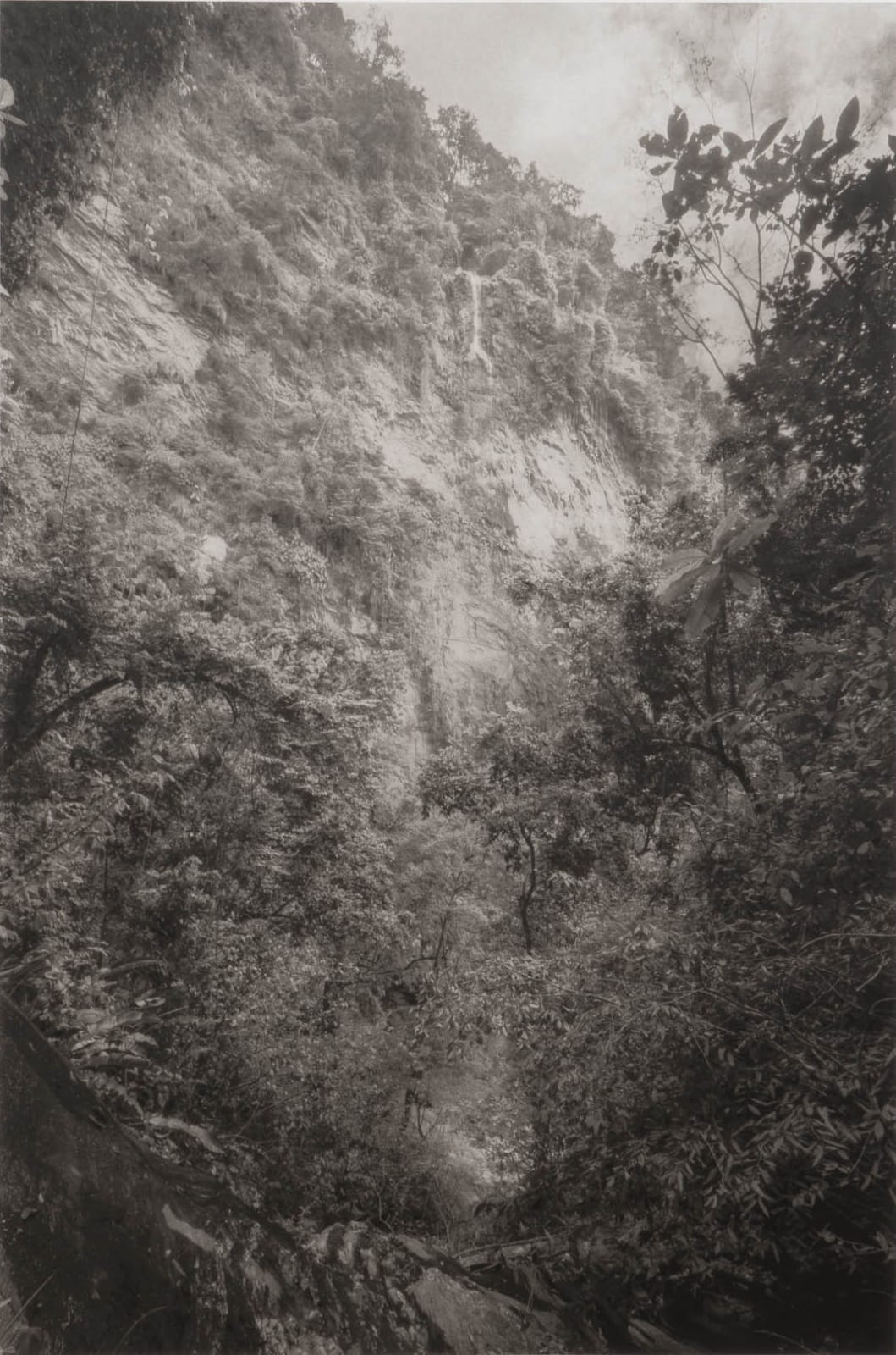 David Hartt The Histories (after Cazabon) 2020 Photogravure from a 27 x 18 1/4 inch plate 31 x 22 1/4 inches Edition of 10 and 1AP