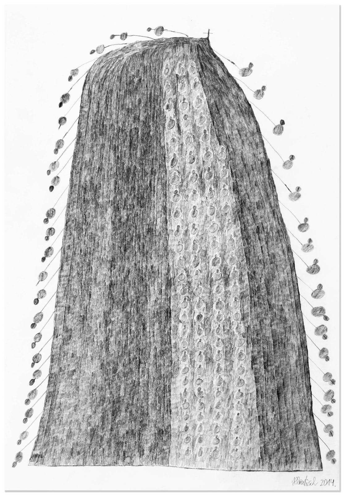 LEMON TREE, 2014 Graphite on paper 18.8 x 13 in. (47.8 x 33 cm) HH 9 $3,600