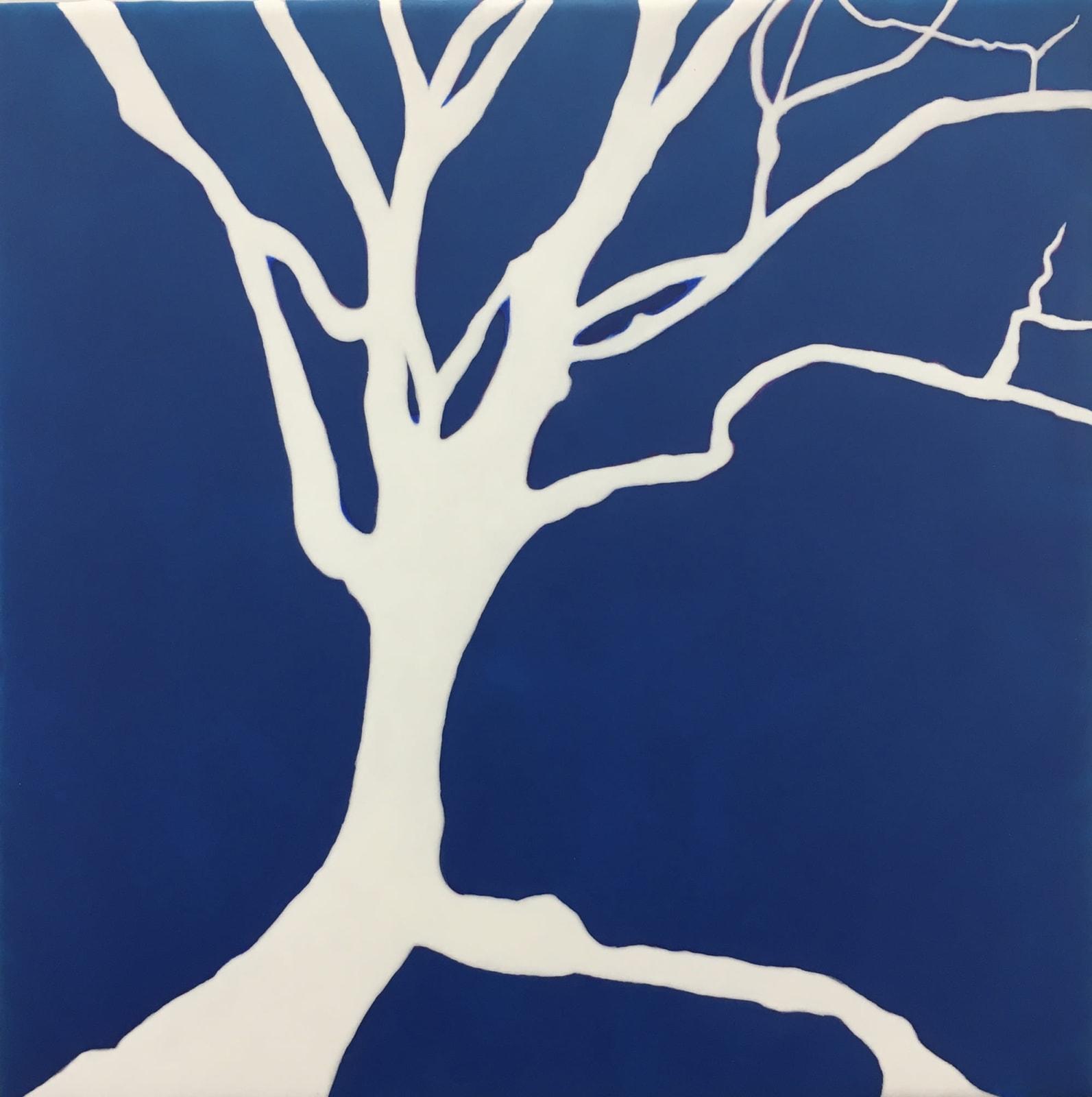 WINTER DOGWOOD, 2019 Acrylic on linen mounted on wood panel 12 x 12 in. 30.5 x 30.5 cm HS 61
