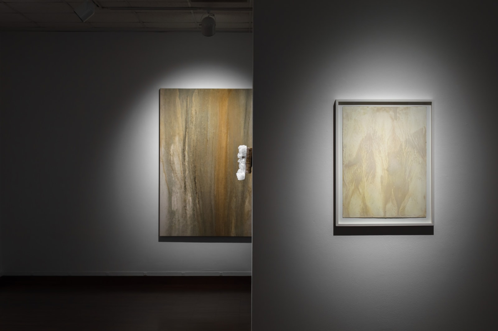 Shinji Turner-Yamamoto, Sidereal Silence: Irish Study #37, 2015
