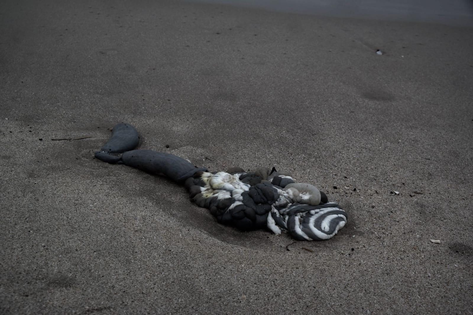 Latifah Iddriss treasures at shore iv - harakiri (inside earth) 42 x 27.67 cm 14.8 x 21 cm Digital print