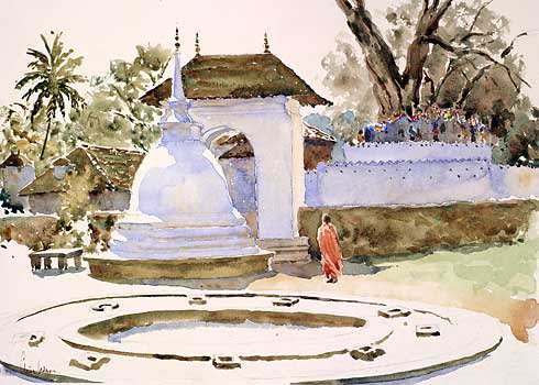 720 The Bodhi Tree Kandy