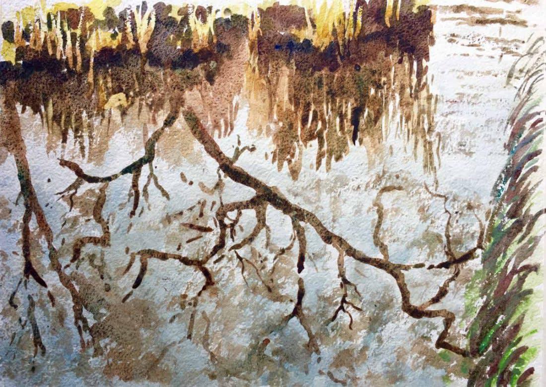 980-Spring in the Savill Gardens, Windsor