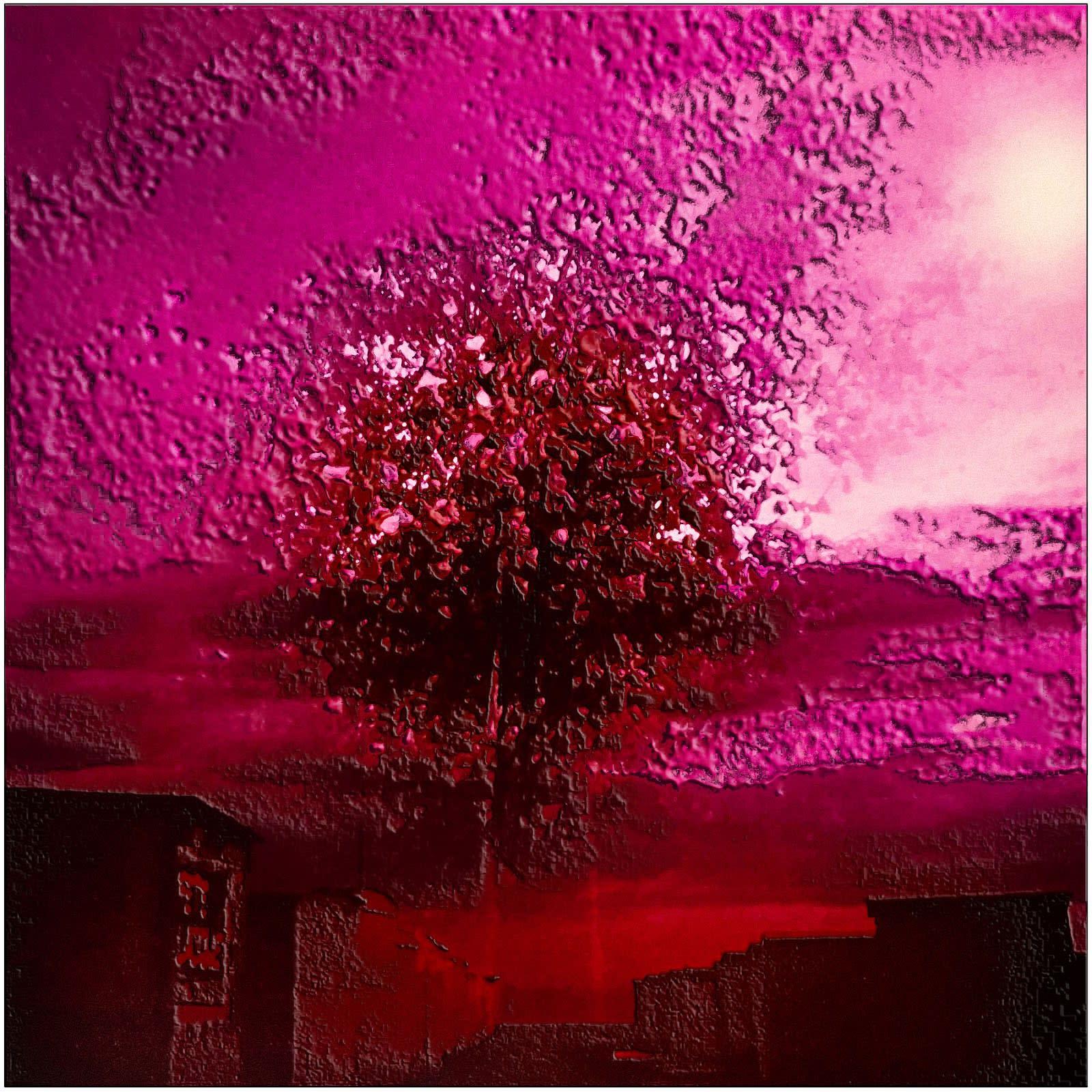 Alain Lacki, L'arbre rose, 1982