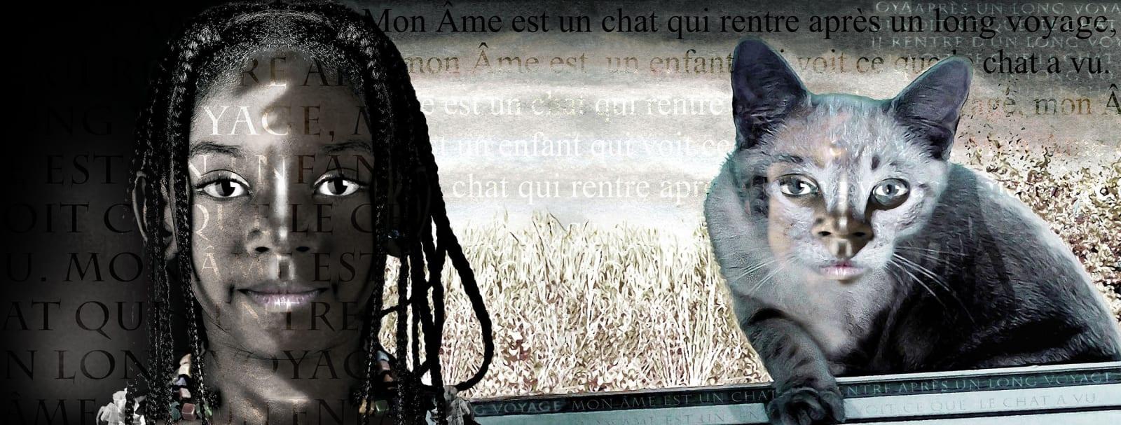 Alain Lacki, Mon Âme est un chat, 2014