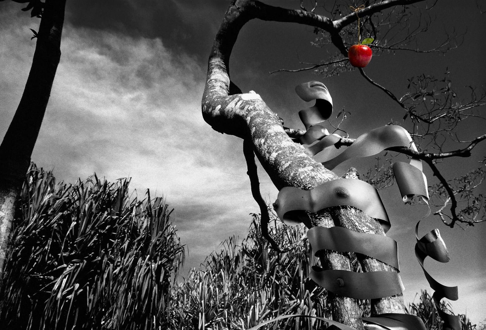 Alain Lacki, Le jardin d'Eden, 2008
