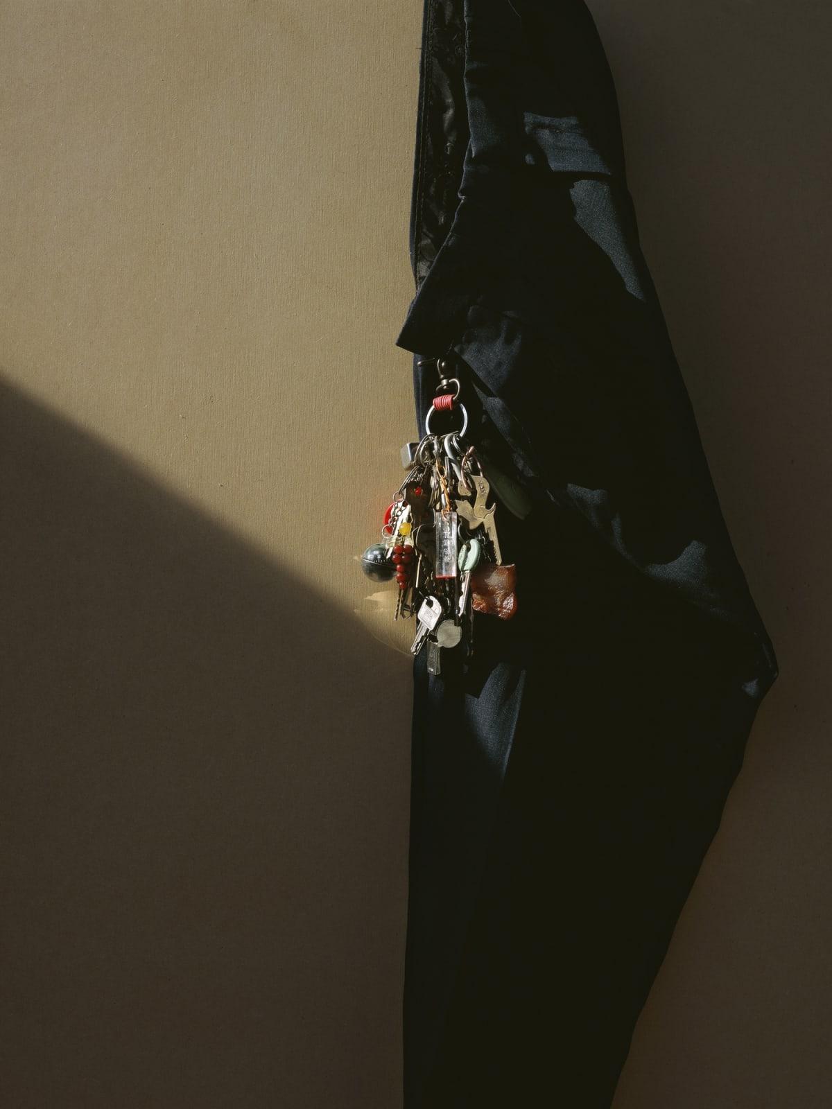 Chen Wei,The Bunch of Keys, 2011