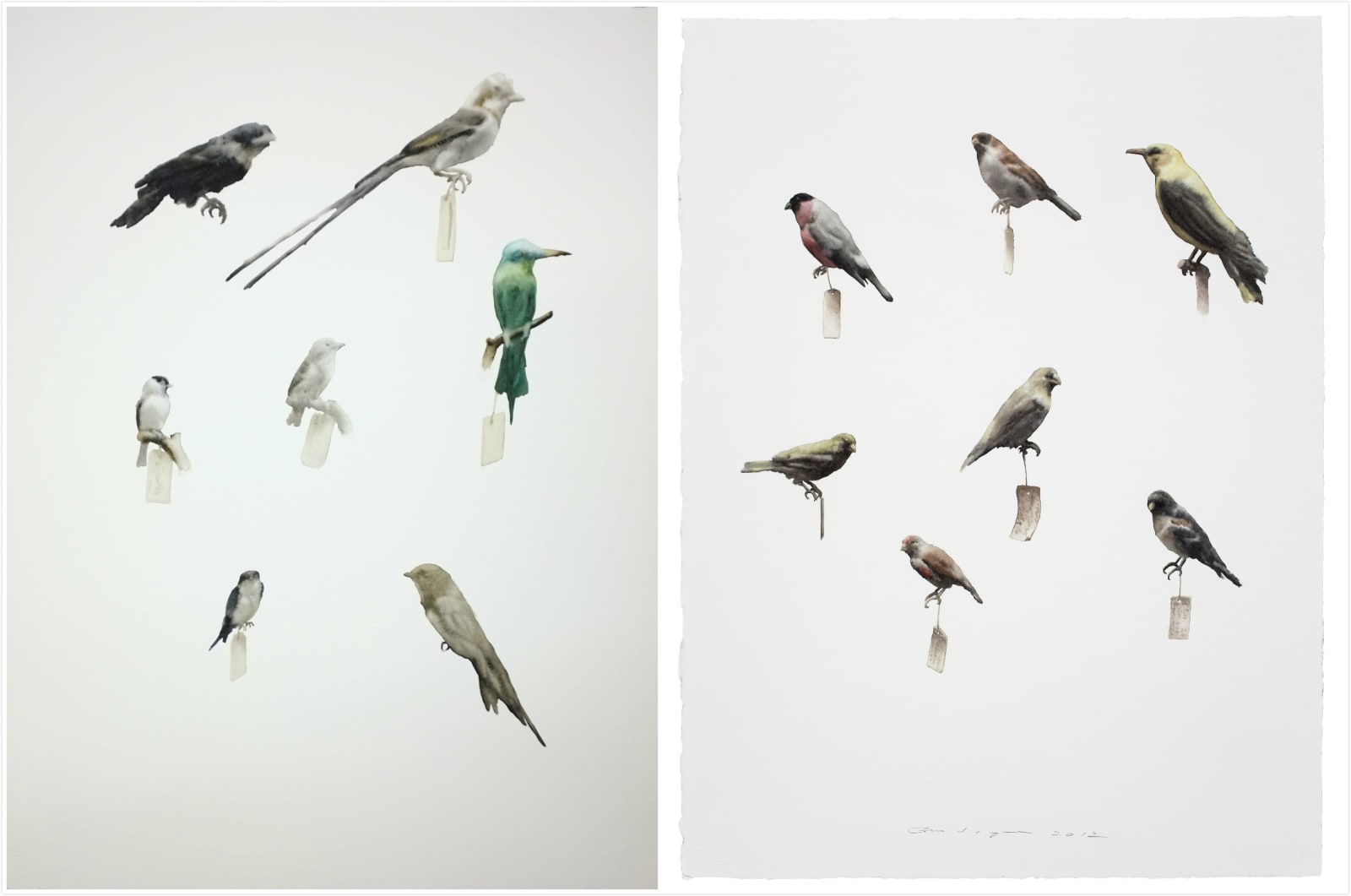 Guo Hongwei Painting is Collection - Bird 5, 2012-2013