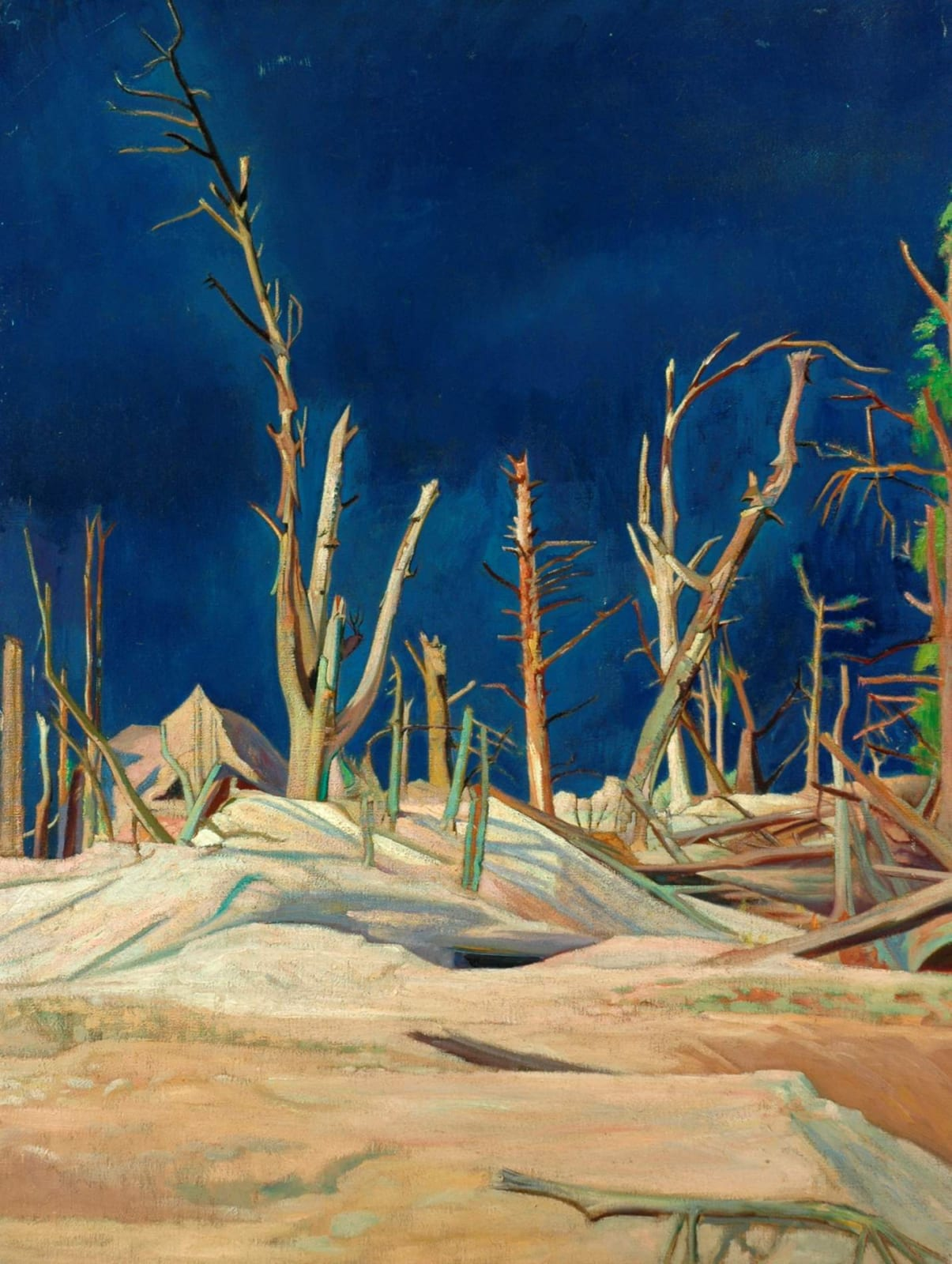William Rothenstein (1872-1945) Blasted Trees 1918 Oil on canvas 101 x 76 cm Bradford Museums and Galleries To see and discover more about this artist click here