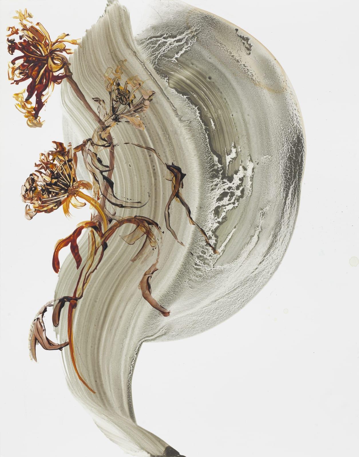Metamorphosis acrylic on yupo paper on board 35cm x 27cm