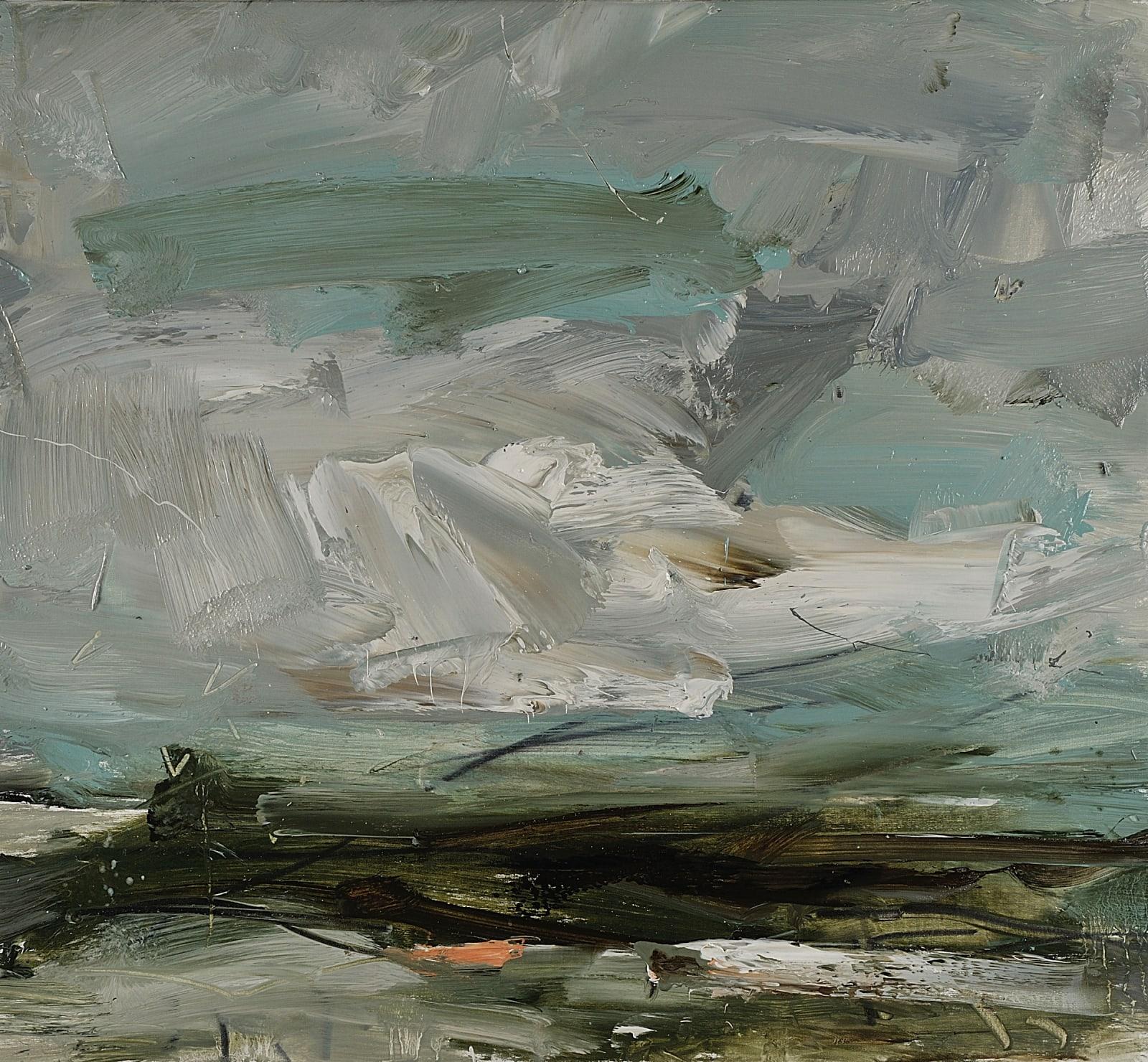 Green Grey Light, Hebrides oil on canvas 55cm x 60cm