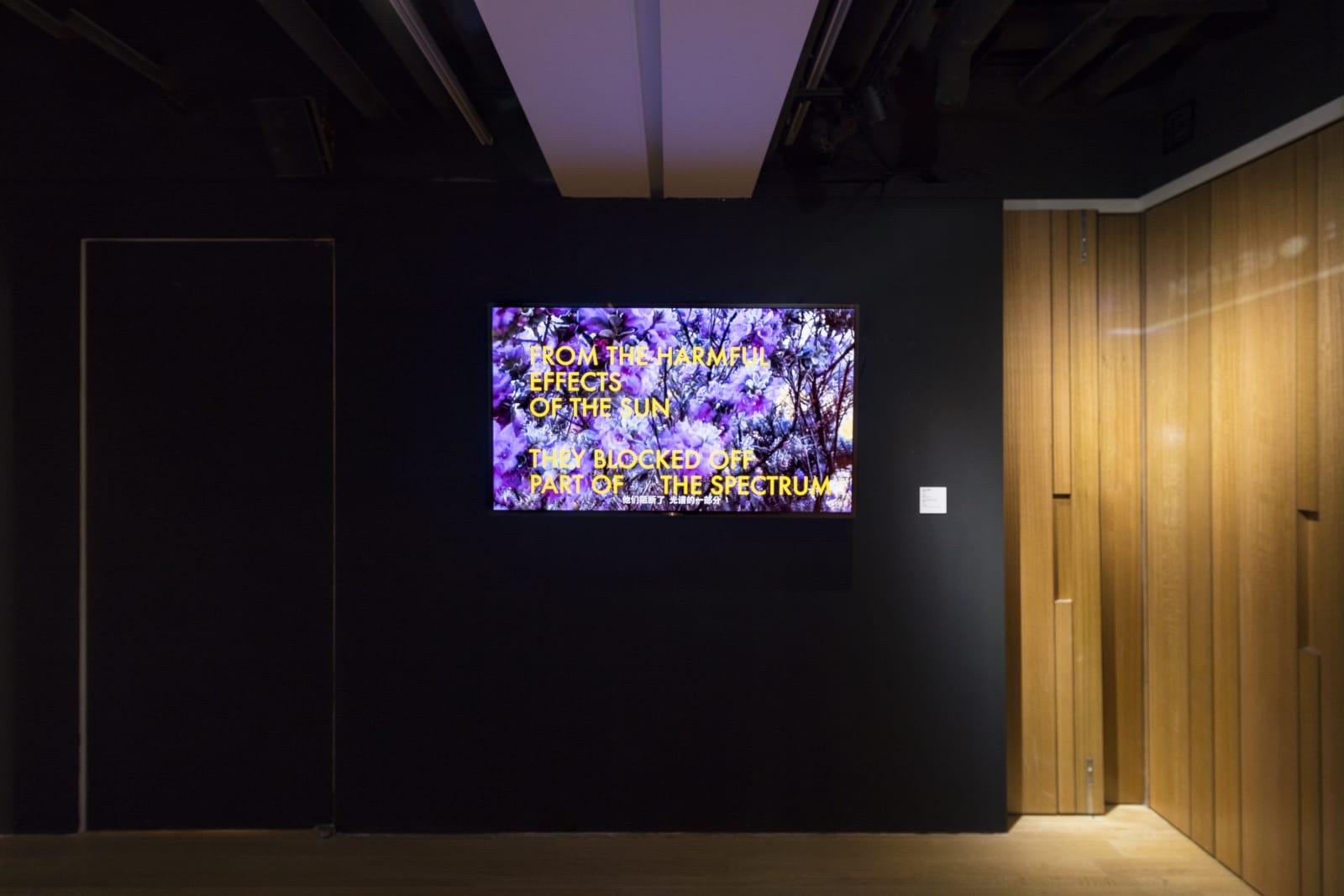展览现场 Exhibition view