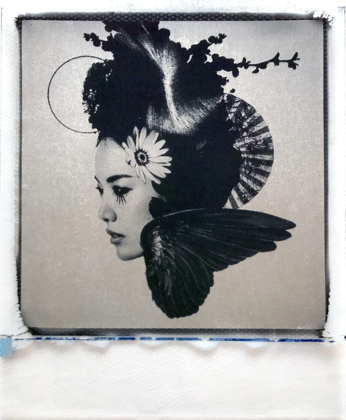 ContactAndrew Millar - The Flowers Whirl Away