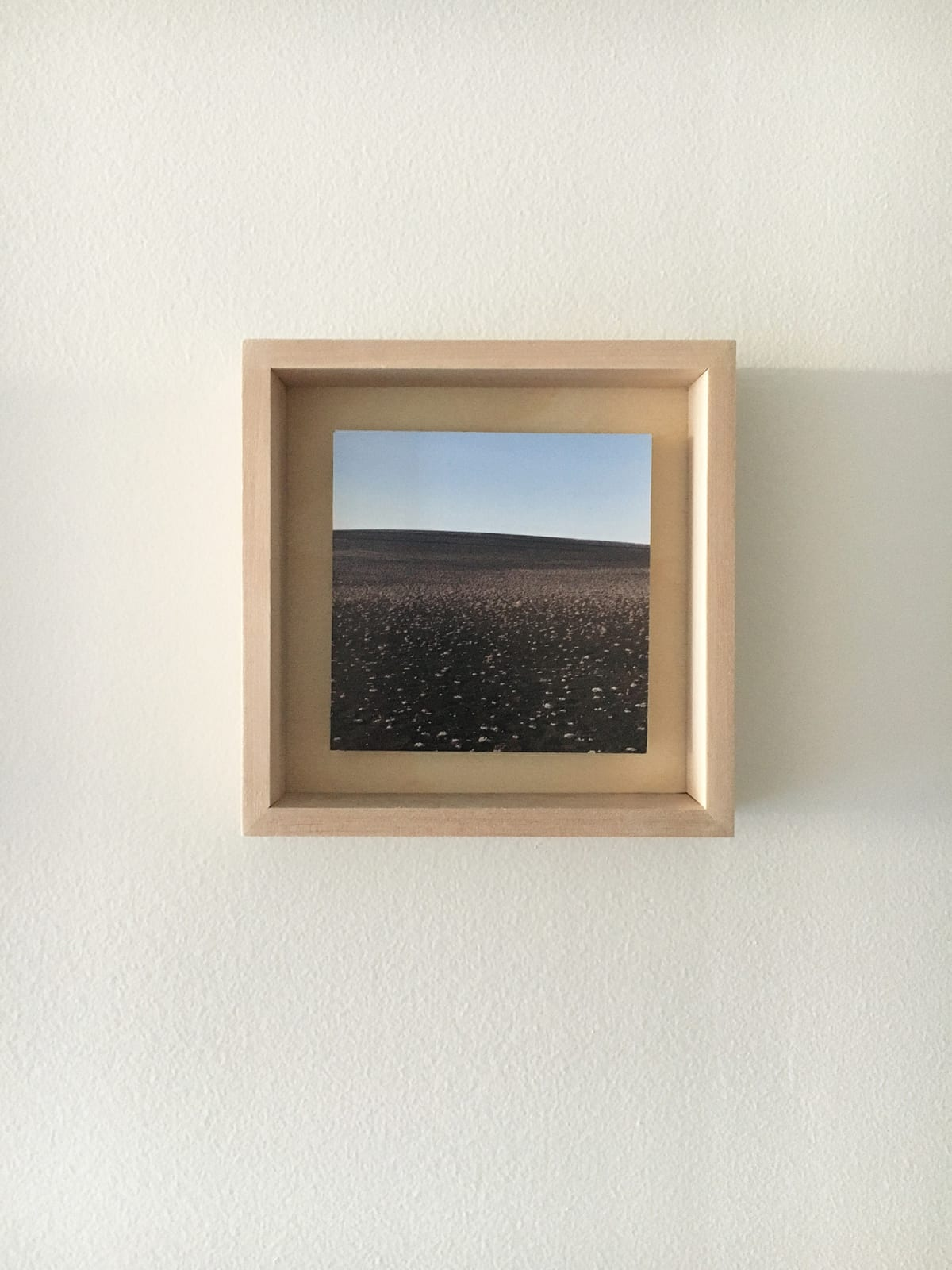 Grace Clark Sweet Fields XI, 2020 digital pigment print 6 x 6 inches, edition 1/3 $ 500.00
